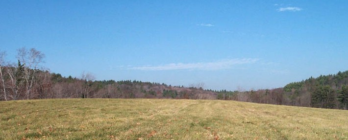 Fields and forest near Fitchburg, MA - Photo by Al Futterman