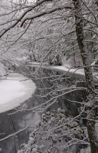 Squannacook River - Photo by Joan Wotkowicz