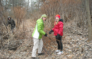 Stomping invasive Japanese knotweed - Photo by Mary Marro