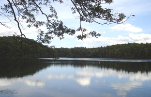 Mirror Lake in Devens - Photo by Wynne Treanor-Kvenvold